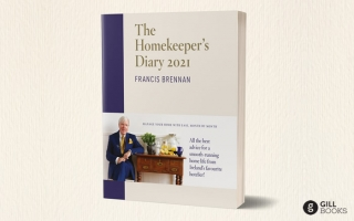 A new diary from Ireland's favourite home management expert!